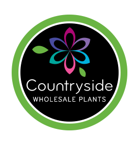 Countryside - Wholesale Plants